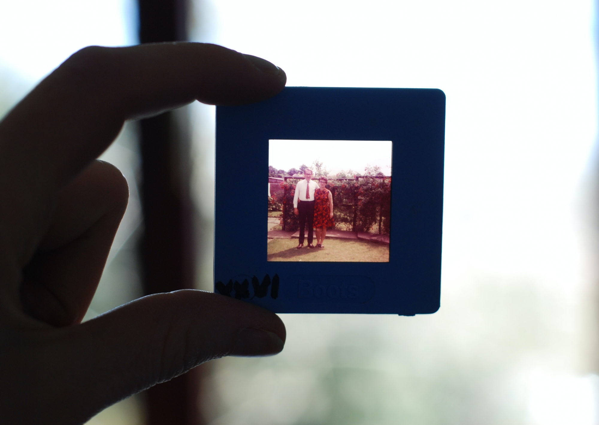 holding up a slide picture