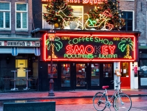 cannabis cafe in Amsterdam