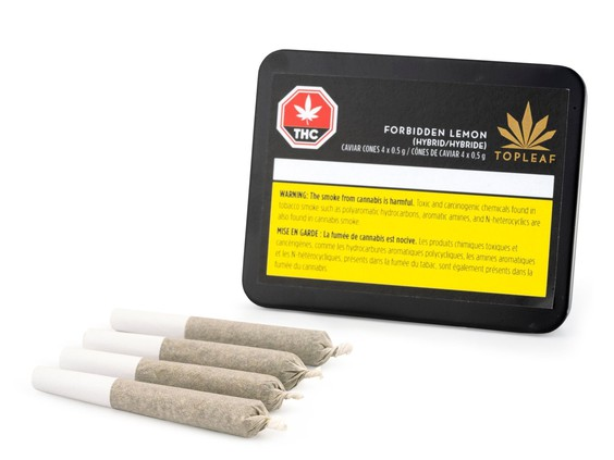 cannabis rolled cigarettes